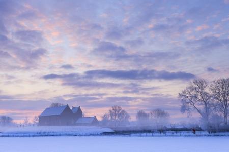january sunrise: Puesta de sol hermosa del invierno con la nieve