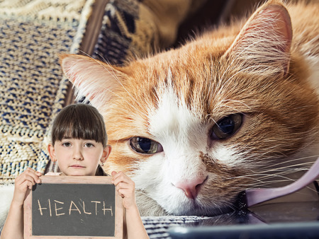 liying: Caucasian little girl hold chalkboard signed health with sick sad red cat lying at home