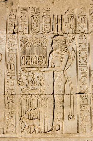 Ancient Egyptian carving on the wall of Dendera Temple of a priestess offering to the goddess Maat   Ancient carving, over 1000 years old