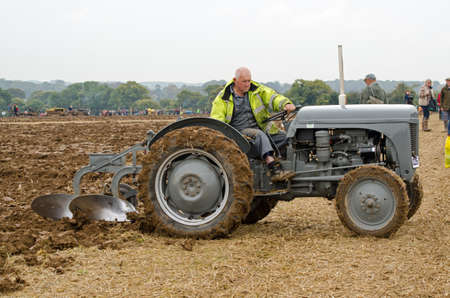 BASINGSTOKE, UK  OCTOBER 12, 2014: Roy Jury competing in the second day of the British National Ploughing Championships organised by the Society of Ploughmen.  Taking part in the Ferguson Ploughing Championship.  Accredited photographer