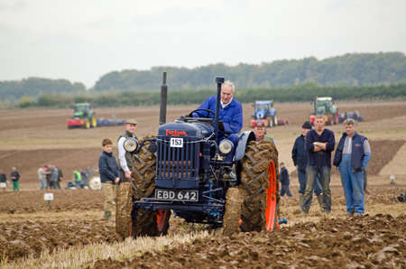 ploughing: BASINGSTOKE, UK  OCTOBER 12, 2014: Viv Hughes competing on a vintage Fordson tractor in the second day of the British National Ploughing Championships organised by the Society of Ploughmen.  Competing in the National Vintage Ploughing Championship  Hydrau