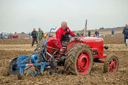 david brown: BASINGSTOKE, UK  OCTOBER 12, 2014: Colin Hewetson competing on a vintage David Brown tractor in the second day of the British National Ploughing Championships organised by the Society of Ploughmen.  Competing in the National Vintage Ploughing Championship