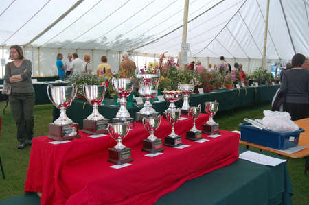 typically english: BASINGSTOKE, UK - JULY 7, 2007:  Trophies waiting to be won at the Basingstoke Flower and Produce Show in a marquee at the Hampshire town.  Prizes awarded for flowers, vegetables and cookery. Editorial