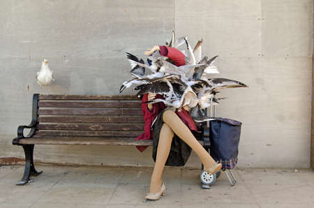 Anorak: WESTON-SUPER-MARE, UK - AUGUST 26, 2015:  Sculpture of an older woman being attacked by seagulls on a park bench.  Part of the Dismaland parody theme park at Weston-Super-Mare, Somerset.