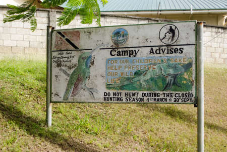 SCARBOROUGH, TRINIDAD AND TOBAGO - JANUARY 7, 2019:  A handpainted sign promoting anti-hunting law on the island of Tobago.  Featuring Campy the white tailed sabrewing hummingbird.  Bushmeat hunting is a popular passtime and is endangering many animals  Redakční