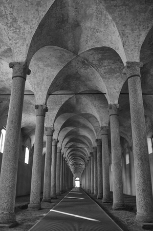 Stables of Ludovico il Moro in 1490 the castle of Vigevano PV