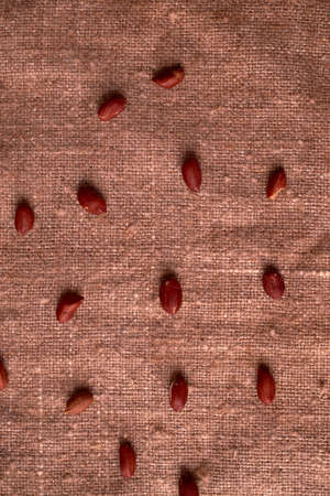 walnut peanut scattered on sackcloth background. fried peanuts