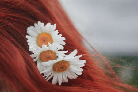 Beautiful red-haired girl with daisies in hair, nature, harmony concept