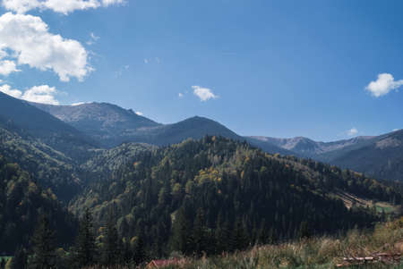 The mountains on a sunny day with clouds and coniferous forest