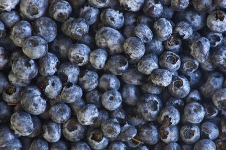 tasty and fresh blueberry berries Stock fotó