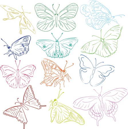 tatto: outline multicilored butterflies solhouettes for design