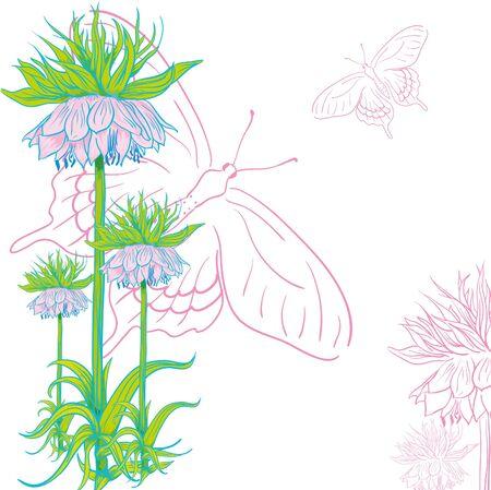 animalitos tiernos: tierna flor invitación tarjeta de fondo con buuterflies Vectores