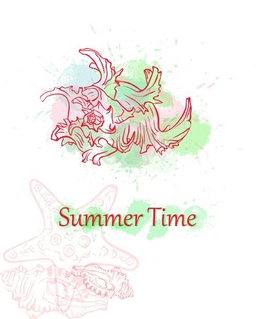 oceanic: colorful seashell summer background Illustration