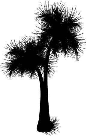 carribean: palmera silueta negro Vectores