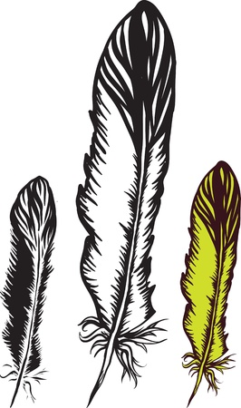 native american art: artistic bird ink feather  Illustration