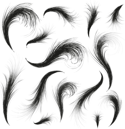 black feather: vector feathers silhouettes set for design