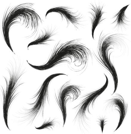 piuma bianca: vettoriali piume sagome impostato per il design Vettoriali