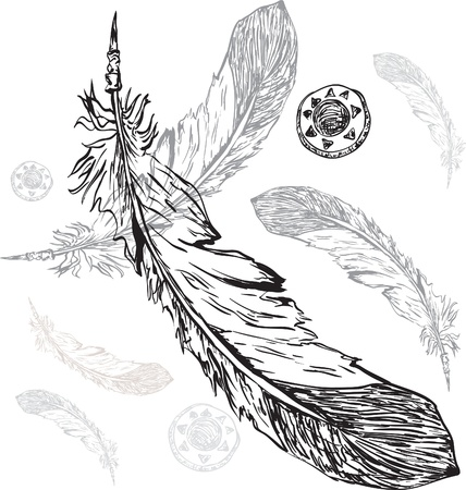 a feather: native american indian feather