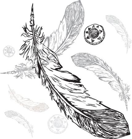 pluma: pluma de indio nativo americano