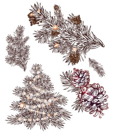 festive pine cones: set of hand drawn christmas decoration elenents. pine tree pine branch, pine cone Illustration