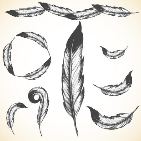 ファルコン: ネイティブ アメリカンのシンボル: 風通しの良い鳥の羽  イラスト・ベクター素材
