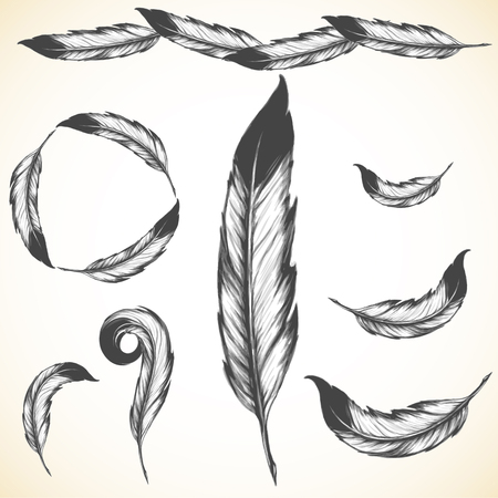 eagle feather: native american symbol: airy bird feather Illustration
