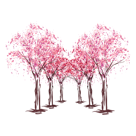 orchard fruit: pink blooming cherry trees Illustration