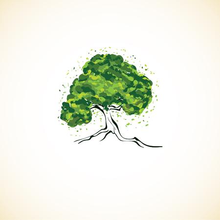 creative artistic green olive tree