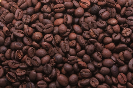 Coffee Beans Mania photo