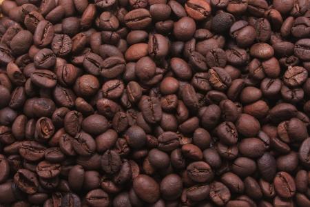 percolator: Coffee Beans Mania