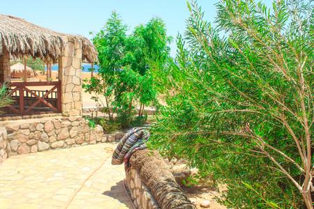 monte sinai: Casa de campo en un campamento en el desierto de Sinaí, Taba con el fondo del mar y las montañas. Foto de archivo