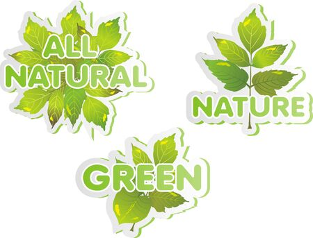 Green Stickers Illustration
