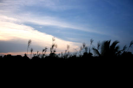 Sky Stock Photo - 18595813