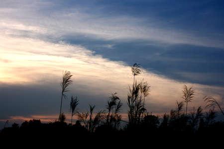 Sky Stock Photo - 18595818