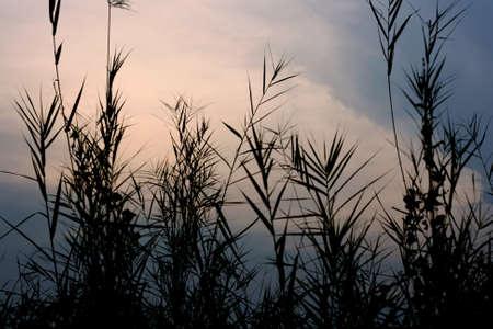 Sky Stock Photo - 18630371