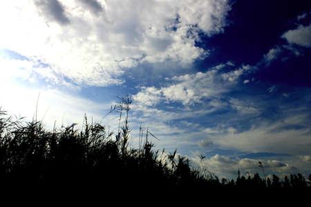 eventide: Sky Stock Photo