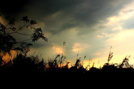 Sky Stock Photo - 19403880