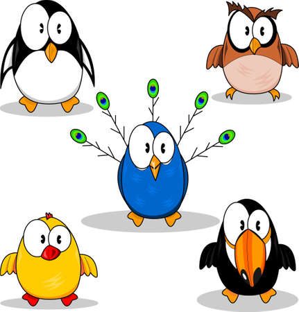 caricaturas de animales: Aves de dibujos animados Vectores