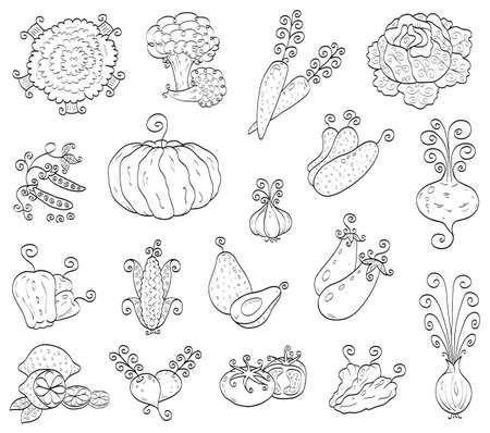 Doodle fruits, vegetables Vector