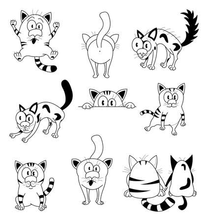 cat drawing: Gatos Vectores