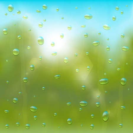 drizzling rain: Summer rain background