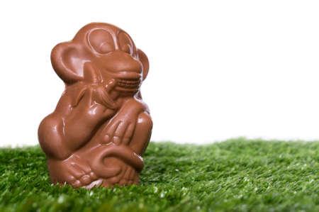 cartoon new year: Chocolate monkey on the grass