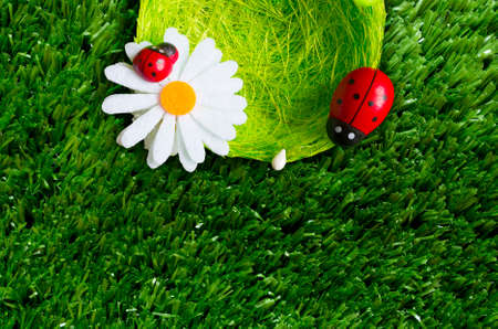 A summer background with a nest, ladybugs, grass.