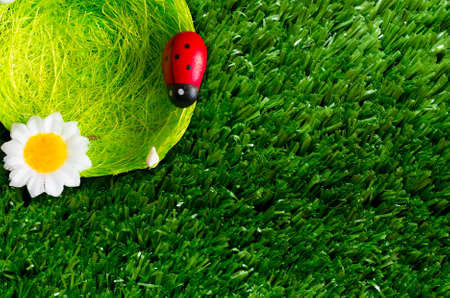 unnatural: A summer background with a nest, ladybugs, grass.