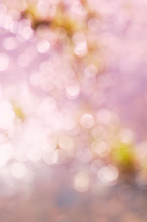 light circular: abstract blurred background Stock Photo