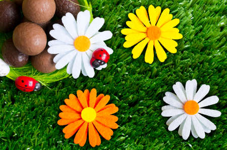 An Easter background with some chocolate easter eggs, flowers, grass.