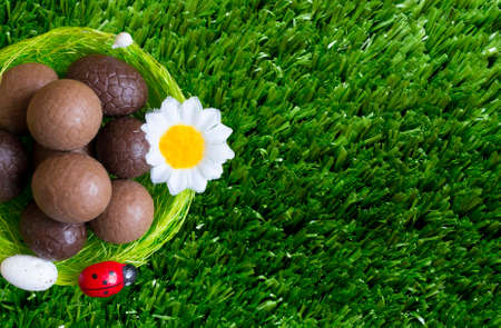An Easter background with some chocolate easter eggs, a flower, grass.