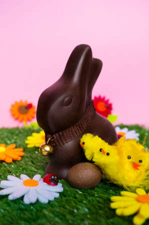 easter flowers: An Easter background with an Easter chocolate bunny, an easter egg, flowers, grass.