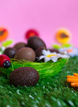 brown egg: An Easter background with some chocolate easter eggs, flowers, grass.
