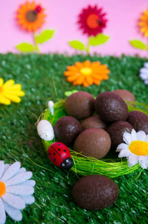 grass plot: An Easter background with some chocolate easter eggs, flowers, grass.